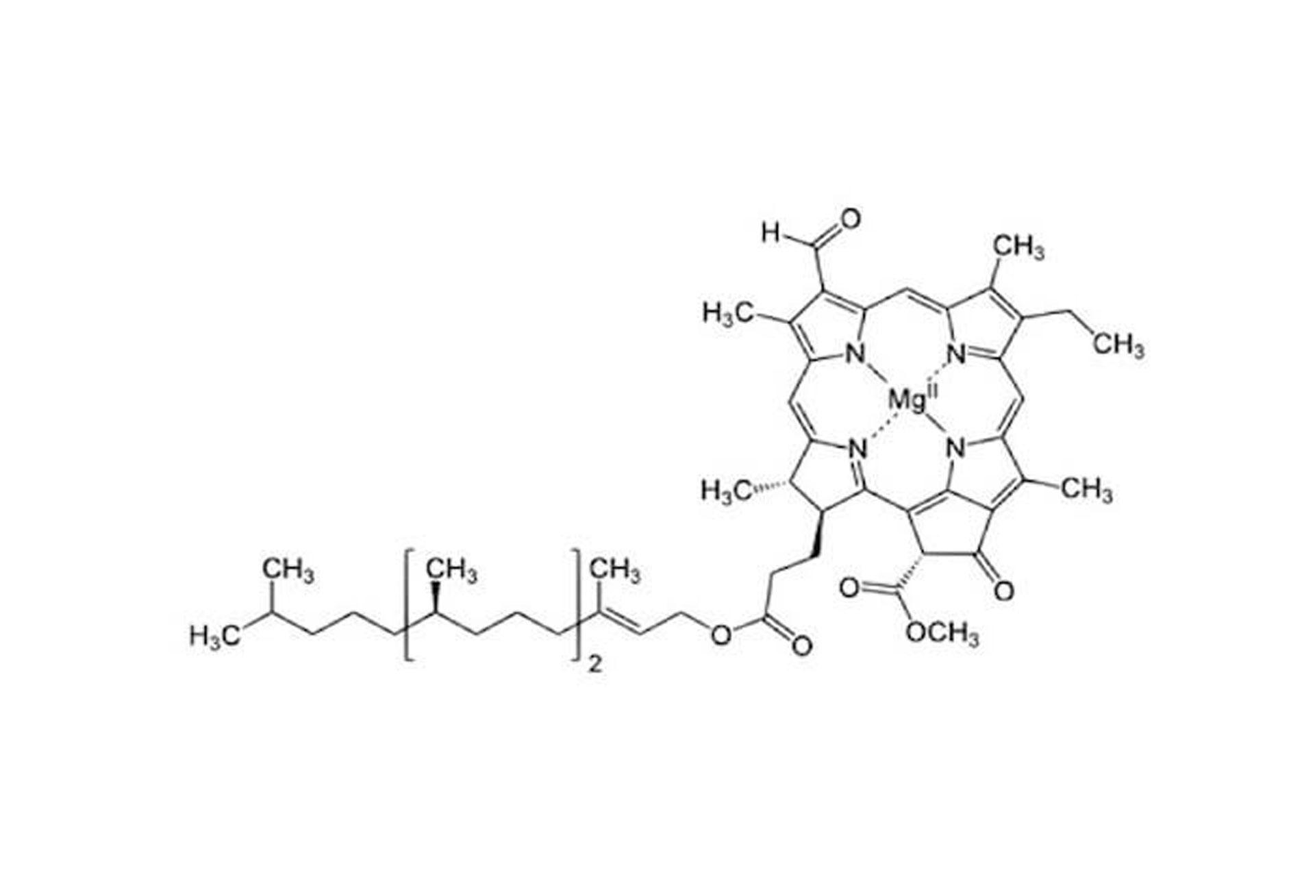 clorofilla struttura chimica